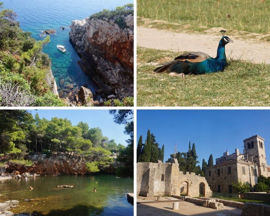 île de Lokrum, croatie