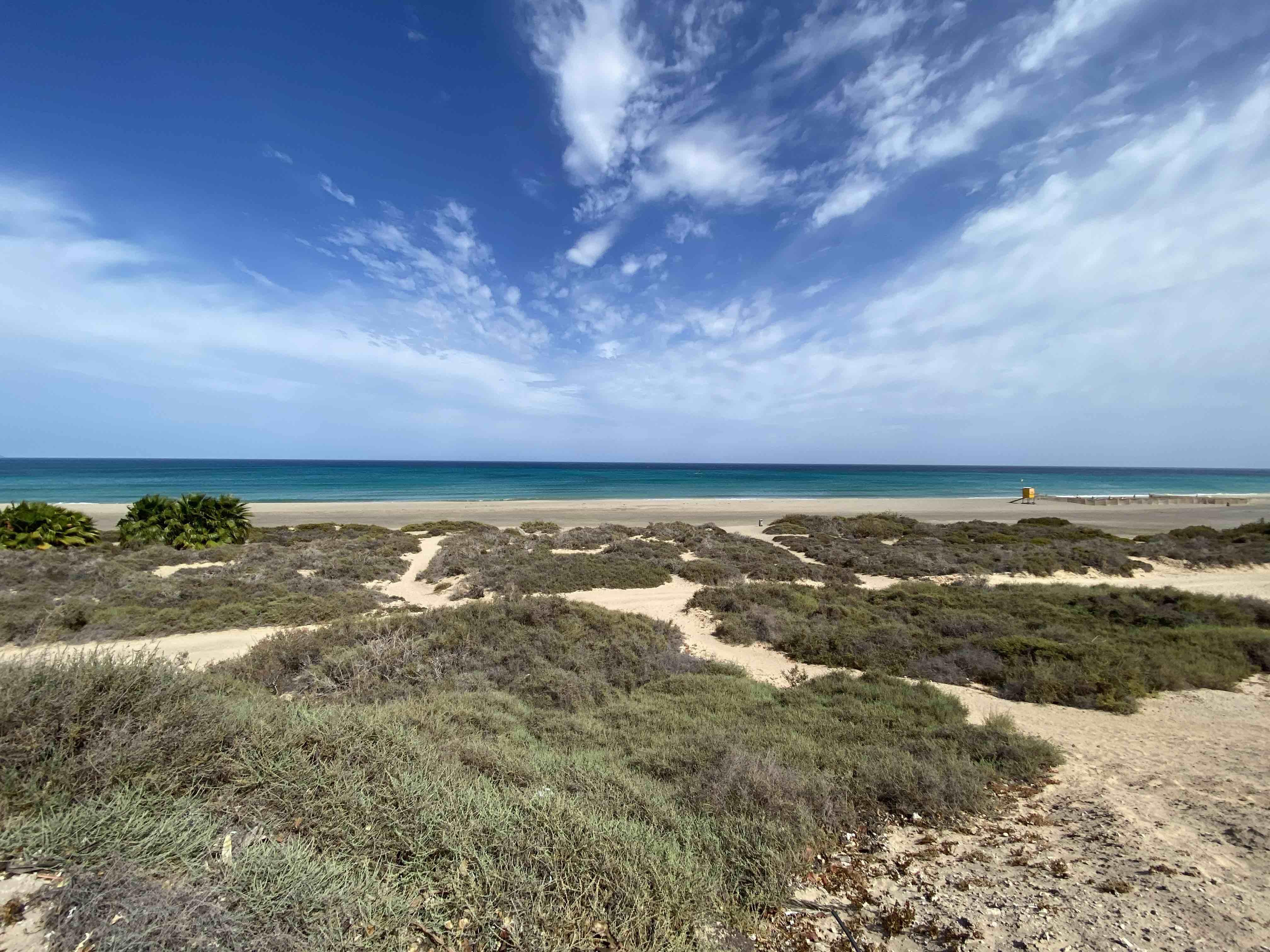 fuerteventura, canaries, plage de sotavento