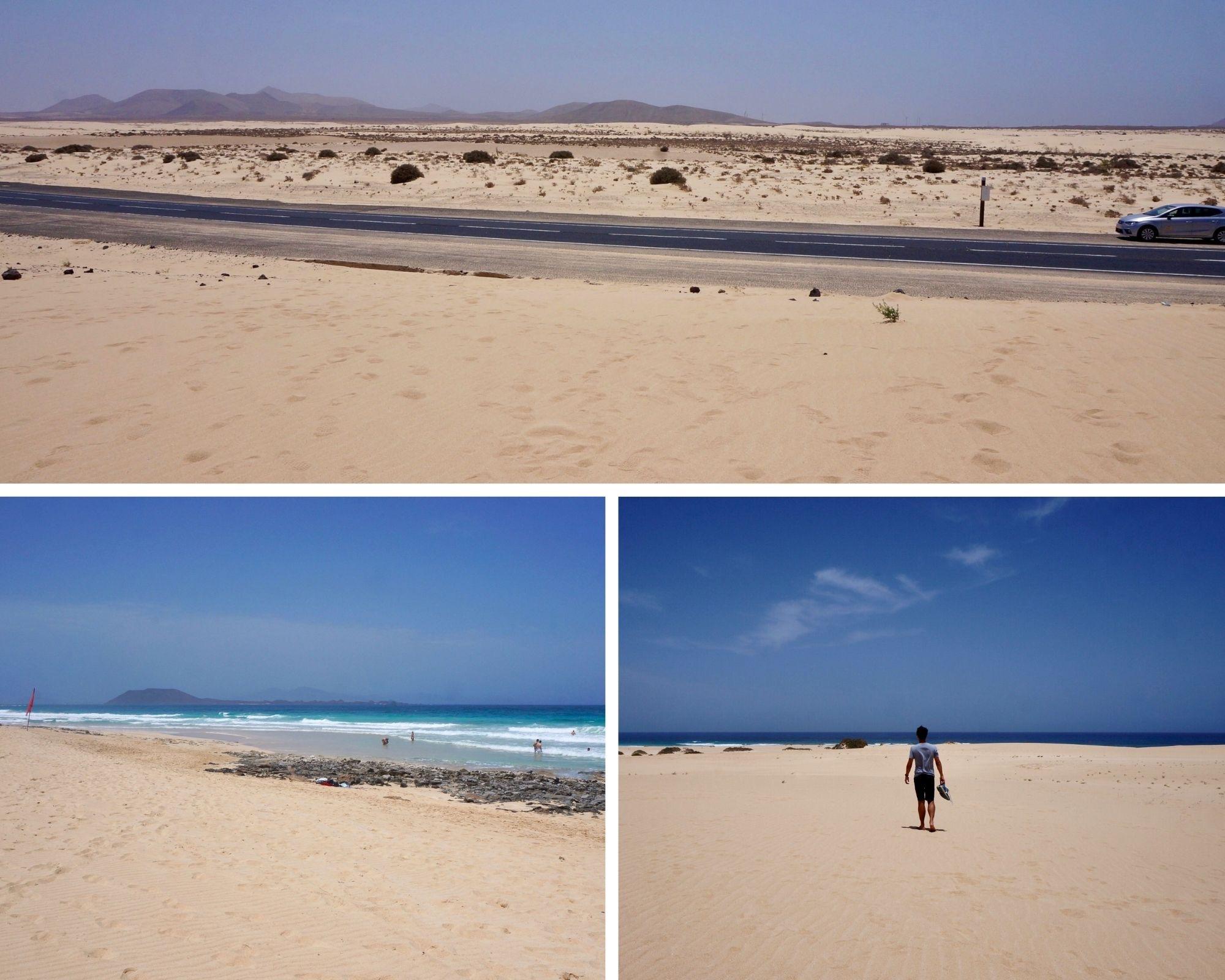 fuerteventura, canaries, dunes de corralejo