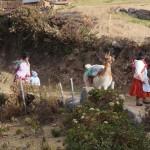 Circuit de 20 jours : Pérou Bolivie