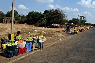 marchands de fruits en inde