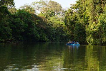 costa rica tortuguero canoe