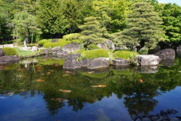 jardin japonais, Yoyogi Koen, tokyo